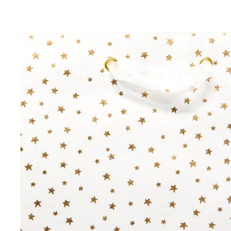 Twinkle Star – Classic Cub Gift Bag 3