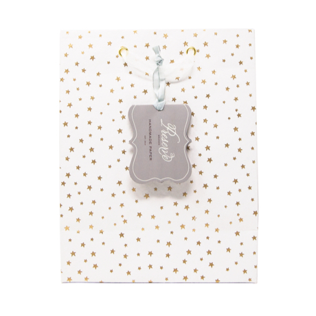 Twinkle Star – Classic Cub Gift Bag 2