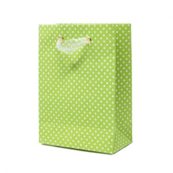 Irish Rain – Petite Cub Gift Bag 3