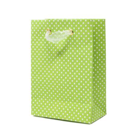Irish Rain – Petite Cub Gift Bag 3